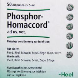Купить Фосфор гомаккорд для собак (Phosphor-Homaccord Heel) ампулы №50 в Санкт-Петербурге
