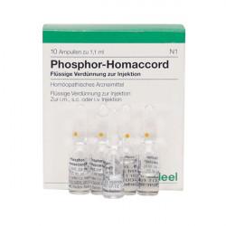 Купить Фосфор гомаккорд Хеель (Phosphor-Homaccord) амп 10шт в Санкт-Петербурге